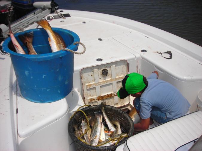 fishing-pics-6-08-053