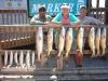 sept-17-09-heath-mentzer-trout-002