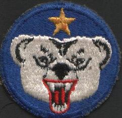 polarbeararmypatch